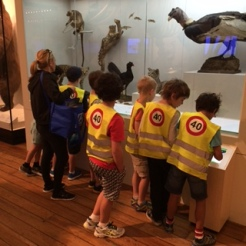 Vacation Care group visiting Wild Planet with museum invigilator