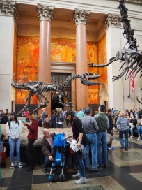 The Natural History Museum, New York